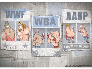 2020 Donald Trump vs. Joe Biden cartoon