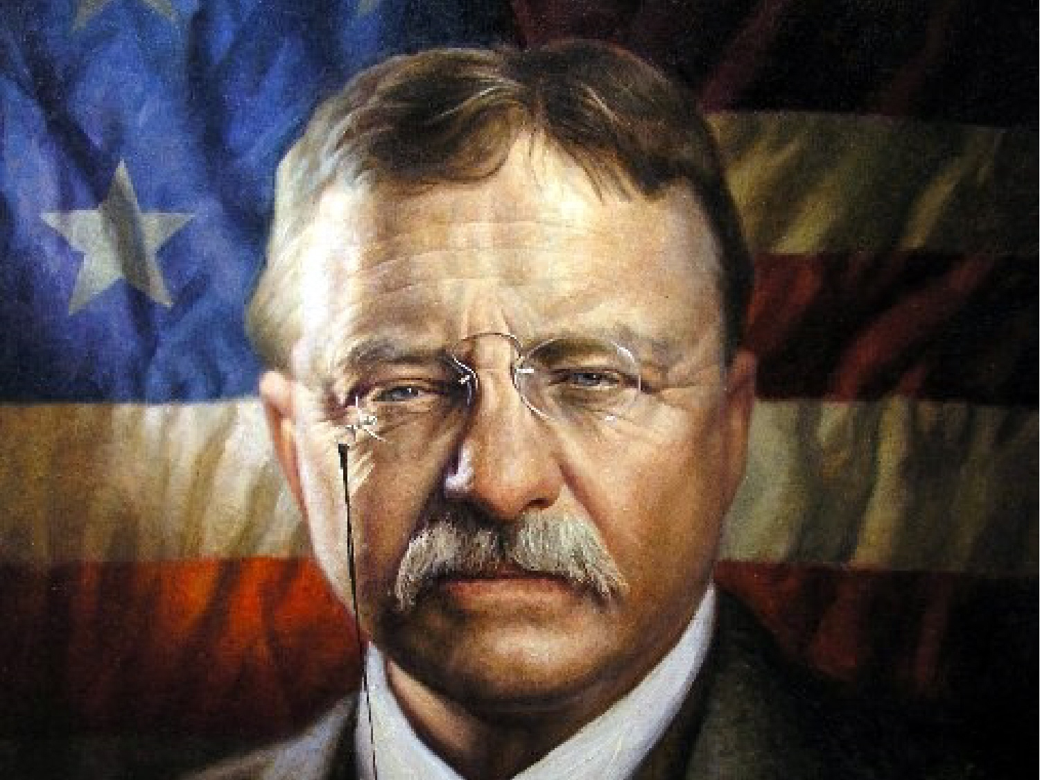 Theodore Roosevelt American Renewal