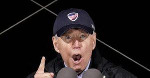 Joe Biden Puppet