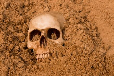 The Young Man and the Skull Myth